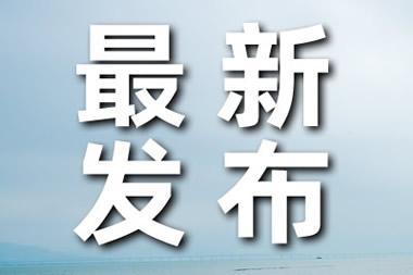 2名中国矿工在尼日利亚获救 目前情况如何??