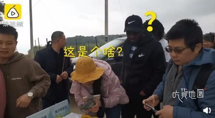 重庆一景区清明推出麻将造型青团 具体什么样子?