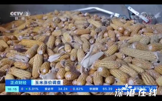 玉米价格创历史新高 对民众会有影响吗?何时能降价?