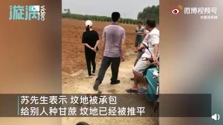 男子扫墓发现墓地被种甘蔗 若无合理交待便报警