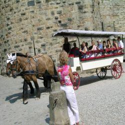 法國Carcassonne