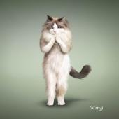 瑜伽猫挂历图片5